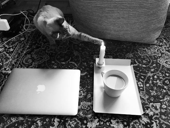 That Freelance Life